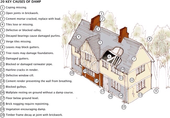 Causes of damp